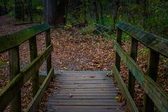 Gå bron på en fotvandra slinga Royaltyfria Foton