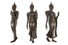 Gå Buddha Royaltyfria Bilder