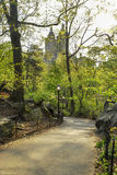 Gå den banaNew York Central Park arkivfoto