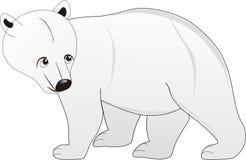 Gå den enkla vita färgbjörnen Arkivfoto