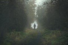 Gå den ensamma personen på en mest forrest bana under en mörk dag Arkivfoton