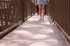 Gå för bro Royaltyfri Bild