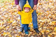 gå för faderson Baby som tar första steg med faderhjälp i höstträdgård i staden Royaltyfri Fotografi