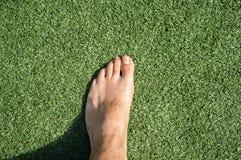 gå för gräs Royaltyfria Bilder