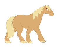 gå för häst Royaltyfri Foto
