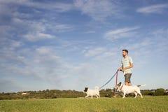 gå för hundar royaltyfri foto