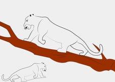 gå för leopard stock illustrationer