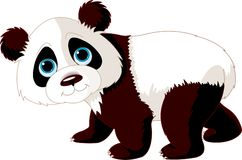 gå för panda Royaltyfri Bild
