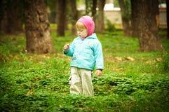gå för park för höstbarn gulligt Arkivfoto