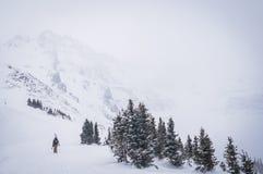 Gå för skidåkare Fotografering för Bildbyråer