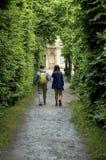 gå för skog Fotografering för Bildbyråer