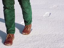 gå för snow Arkivbilder
