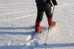 gå för snowshoe Fotografering för Bildbyråer
