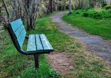 gå för trails Arkivfoto