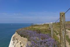 Gå från Rottingdean till Brighton 5 Royaltyfri Fotografi