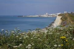 Gå från Rottingdean till Brighton 6 Royaltyfri Fotografi
