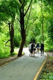 Gå gatan till nationalparken Royaltyfri Fotografi