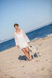 Gå hunden på stranden Fotografering för Bildbyråer