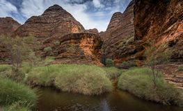 Gå in i den Catherdral klyftan, Purnululu, nationalpark Arkivbild