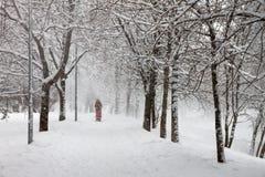 Gå i en snöig dag Royaltyfri Fotografi