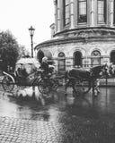 Gå i regn i lagledare Arkivbilder