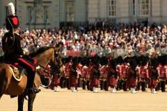 Gå i skaror färgceremonin, London UK Häst- och ryttareanseende i förgrund royaltyfria bilder