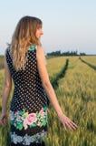 gå i vetefältet Fotografering för Bildbyråer