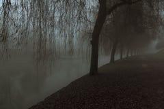 Gå länge banan på flodstranden i Ljubljana arkivbilder