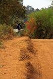 Gå längs vägren i Suye, Tanzania, Afrika Royaltyfria Foton