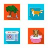 Gå med en hund i parkera som kammar en hund, ett veterinär- kontor för ` som s badar ett husdjur Veterinärklinik och uppsättning  Royaltyfri Bild