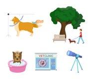 Gå med en hund i parkera som kammar en hund, ett veterinär- kontor för ` som s badar ett husdjur Veterinärklinik och uppsättning  Arkivfoton