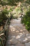 Gå ner på stenbanan som ner leder till den sandiga stranden för praiada-marinha med vegetationväxter Royaltyfri Foto