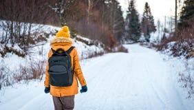 Gå på den snöig vägen Royaltyfri Fotografi