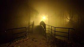 Gå på dimma arkivbilder