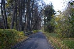 Gå på sparvkullarna i hösten, Moskva Arkivbilder