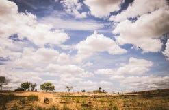 Gå på torkan i landet av ljus royaltyfri fotografi