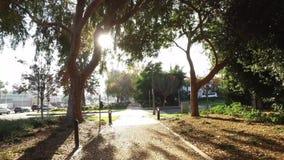 Gå perspektiv på Beverly Hills Park Path stock video