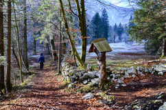 Gå runt om sjön Bohinj in tidigt och dimmig morgon Royaltyfri Foto