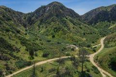 Gå slingor under Kalifornien kullar Fotografering för Bildbyråer