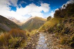 Gå spåret i Otira dalspår, Arthurs passerande, Nya Zeeland Royaltyfri Fotografi