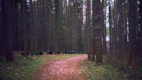 Gå till och med banan för höstskogskogen Vintern är kommande arkivfilmer
