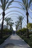 Gå till och med El Umbracle i Valencia royaltyfria foton