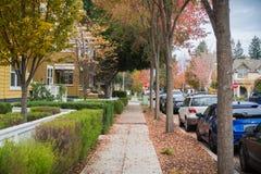 Gå till och med en bostads- grannskap på en molnig höstdag; färgrika stupade sidor på jordningen; Palo Alto San Francisco arkivfoto