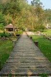 Gå till och med trädgården i varm vår för huggtand Fotografering för Bildbyråer