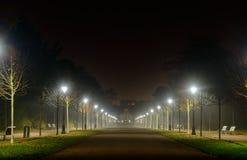Gå tillbaka perspektiv av en upplyst gata Royaltyfri Bild
