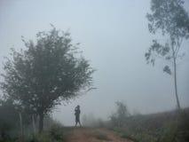 Gå under soluppgång och mist i dalen Royaltyfri Bild