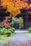 gå ut från det japanska tempelet Royaltyfri Bild