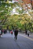 Gå vägen till det Seoul tornet Arkivfoto
