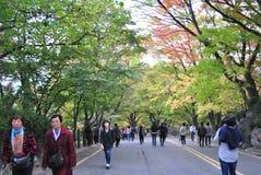 Gå vägen till det Seoul tornet Arkivbilder