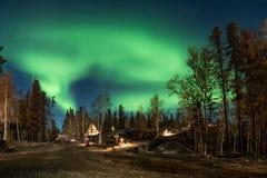 Gå vägen till och med pinjeskog under nordligt ljus på guling royaltyfria bilder